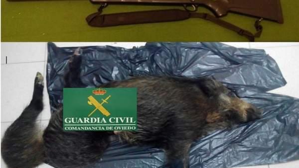 Imagen de los restos de los animales interceptados a los cazadores.