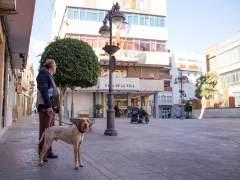Perro en la Plaza del Ayuntamiento de Mislata
