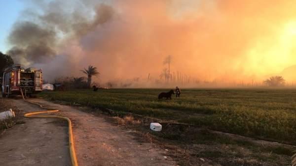 Incendio en Albatera