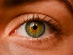 Investigadores logran revertir un tipo de ceguera mediante la regeneración de la retina