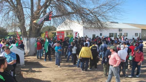 Jornaleros durante una de las ocupaciones de la finca pública de Somonte