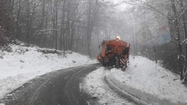 Nieve en el Monseny