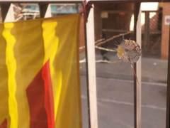 Ventana atacada con disparos de balines en Santa Perpètua de Mogoda
