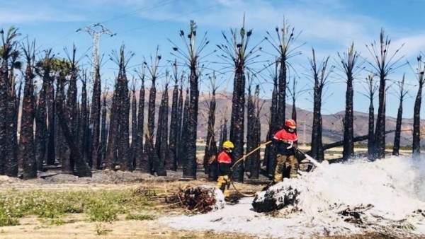 Dos efectivos del Consorcio en el incendio de Orihuela