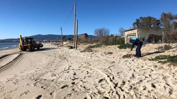 Limpieza de la playa de Palmones, de Los Barrios (Cádiz)