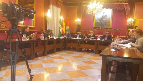 Comisión municipal de Cultura