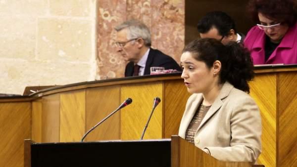 La parlamentaria de IU, Inmaculada Nieto