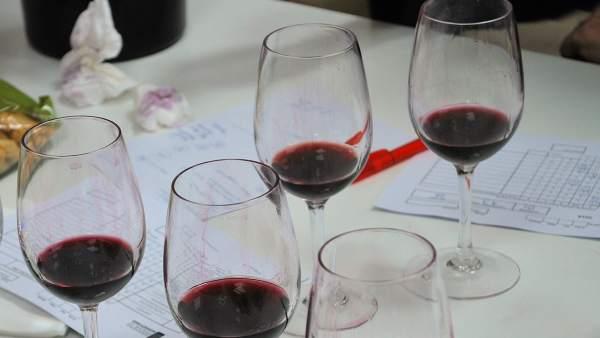 Copas de vino, en la cata de los jueces de Monovino.