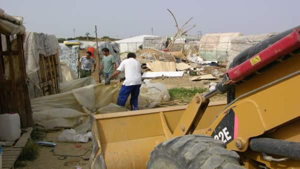 Limpieza de asentamientos en Moguer (Huelva)