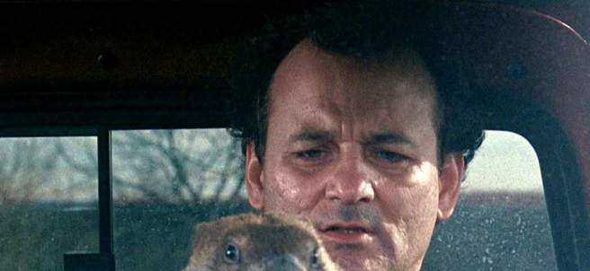 La marmota odiaba a Bill Murray