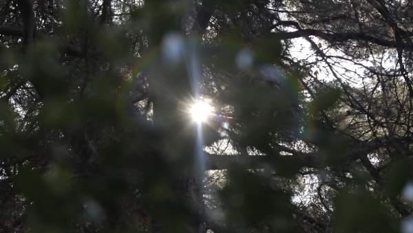 Recursos De Buen Tiempo, Sol
