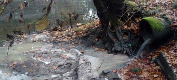 Vertidos de aguas residuales al río Tea