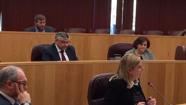 Inmaculada Hernández, portavoz adjunta del PP en la Diputación