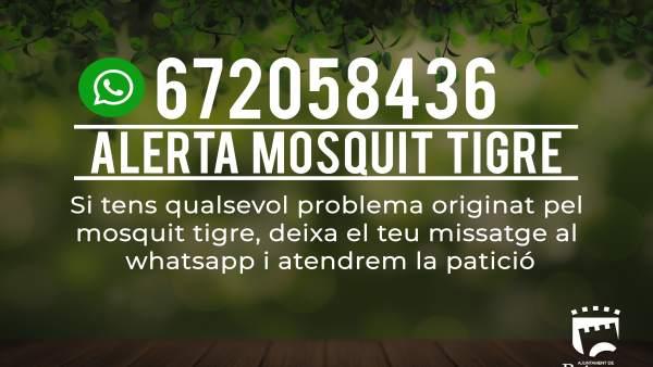 Whatsapp para incidencias sobre el mosquito tigre