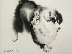 Perro dibujado