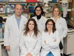 Neurólogos españoles descubren por qué resiste el cáncer cerebral más letal