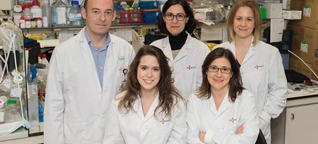 Neurólogos españoles hallan por qué resiste el cáncer cerebral más letal
