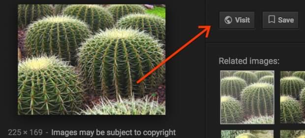 Google elimina el botón 'Ver imagen' de los resultados de búsqueda
