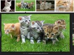 Aún es posible acceder a las imágenes de Google de forma sencilla