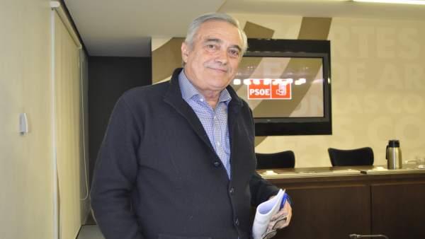 El portavoz parlamentario del PSOE Aragón, Javier Sada.