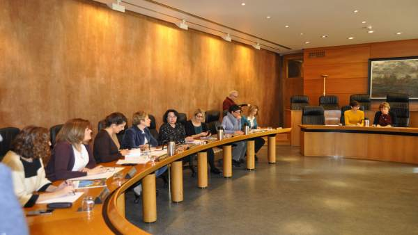 Comisión de Seguimiento del Pacto por la Infancia de las Cortes.