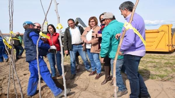 Reparto de árboles en el vivero de la Diputación de Cáceres
