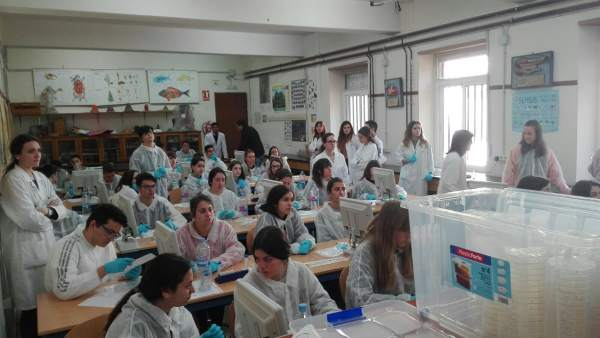 Alumnado participante en el SWI