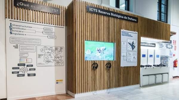 Exposición de la Reserva Biológica de Doñana en la Casa de la Ciencia de Sevilla