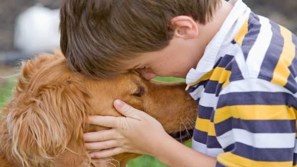 Las mascotas influyen positivamente en los niños