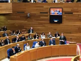 Feijóo durante la sesión de control al Gobierno este miércoles en el pleno