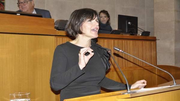 La diputada del PAR, Elena Allué
