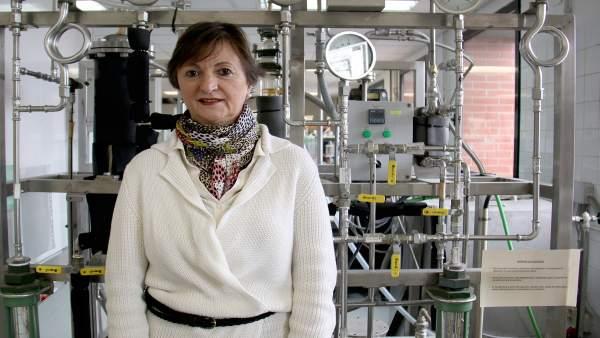 Nota Uc La Catedrática En Ingeniería Química Inmaculada Ortiz Uribe, Premio De I