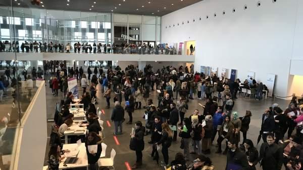 Feria de Ocupación, PalmaActiva