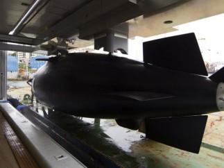 Con mini submarino incluido
