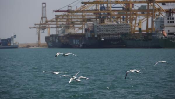 Un túnel sota el mar, opció per a connectar els ports de València i Sagunt