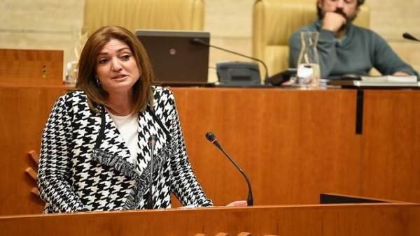 La diputada del PP Pilar Pérez
