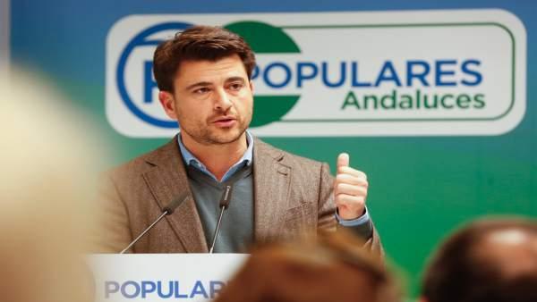 El portavoz municipal del PP en Sevilla, Beltrán Pérez