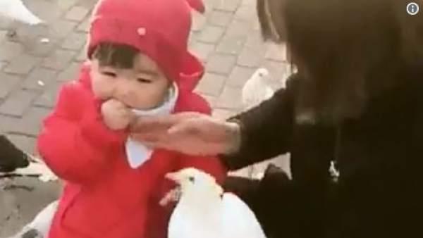 El famoso video de la niña y la paloma