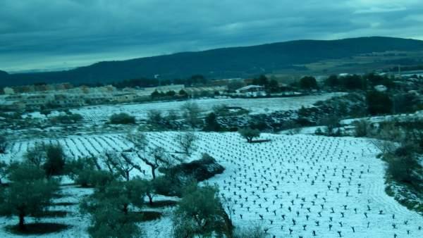 Nieve en Requena (Valencia)