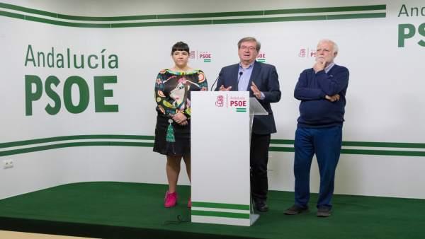 Fernando Martínez, Isabel Mondéjar Y Alfonso Berlanga (PSOE)