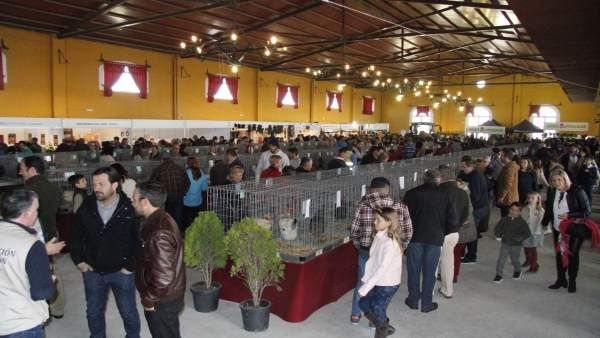 IV Feria Avícola de Medina Sidonia