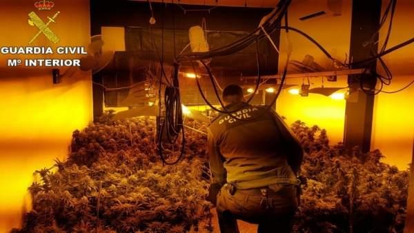 Droga intervenida en Picanya
