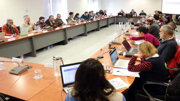 Consejo de Gobierno de la Universidad Pablo de Olavide de Sevilla