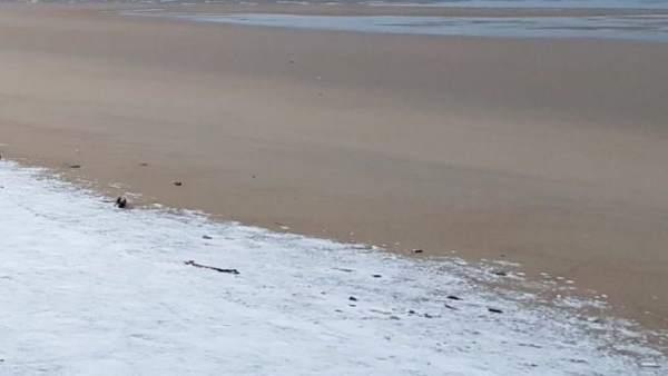 Nieve en la playa de Salinas