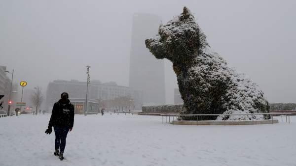Puppy, con un manto blanco en Bilbao