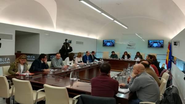 Comisión de investigación sobre empresas públicas