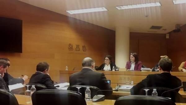 Extesorera del PPCV Yolanda garcía en la Comisión de las institutciones feriales