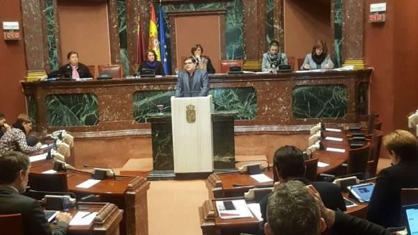 ANDRÉS PEDREÑO DE PODEMOS EN PLENO DE ASAMBLEA