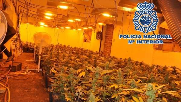 Policía Nacional Nota De Prensa Y Enlace A Vídeo (La Policía Nacional Desmantela