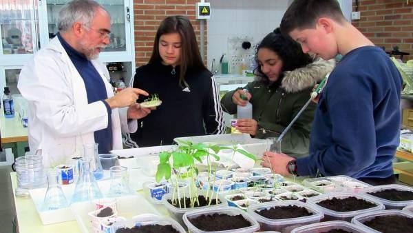 Proyecto Contaminación Cotidiana